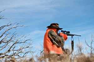Hunting near Hotchkiss Inn.