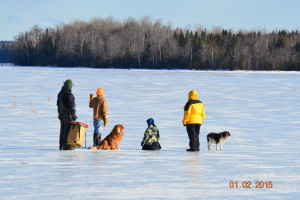 Pets welcome at Wilsons On Moosehead Lake.