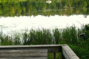 Lake view at Shady Hollow Resort.