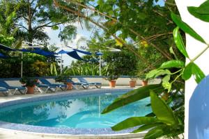 Outdoor pool at Hotel Mocking Bird Hill.