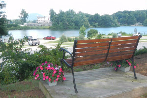 Relaxing view by the lake at Terrace Hotel Lake Junaluska.