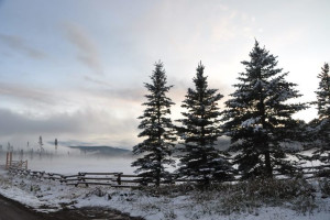 Winter time at Vista Verde Ranch.