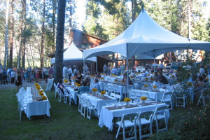 Weddings at Timberline Meadows Lodges.
