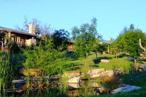 Beautiful Property at Barons Creekside
