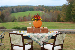 Weddings at Dahlonega Spa Resort.