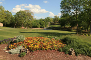 Golf course at Pointe Royale.