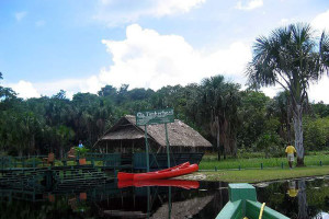 Exterior view of Timberhead Rain Forest Resort.