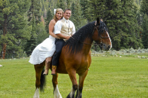 Wedding couple on horse at Harmels Ranch Resort.