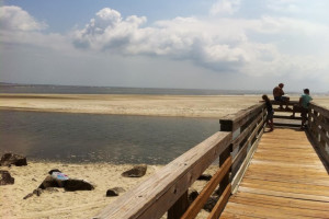 Beach pier at Hodnett Cooper.