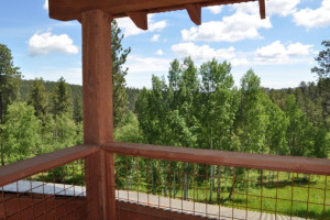 Deck view at Deadwood Connections.