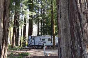 RV camping at Giant Redwoods RV Park & Camp.