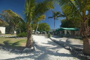 Resort exterior at Lady Elliot Island Resort.
