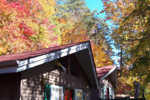 Cabin exterior at Black Forest Bed & Breakfast & Luxury Cabins.