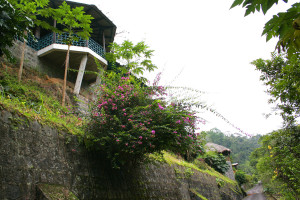 Exterior view of Hacienda Tinalandia Hotel and Nature Reserve.