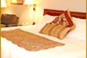 Guest Room at Best Western Plus Morristown Inn