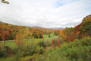 Fall colors at The Killington Group.