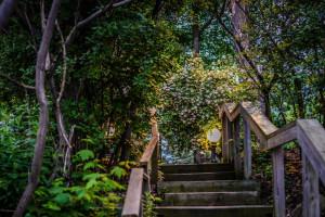 Trails at Elm Hurst Inn & Spa.
