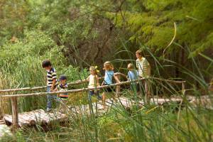 Hikes at Omni Barton Creek Resort & Spa.