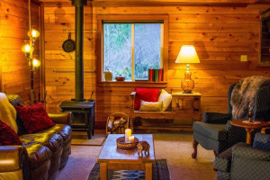 Cabin living room at Wilderness Resort & Retreat.