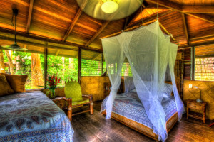 Guest room at Iguana Lodge.