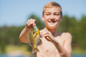 The fishing in Boot Lake, MN is great for pan fish, walleye, bass, and northern, especially in the spring and early summer.