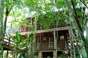 Exterior view of DuPlooy's Jungle Lodge.