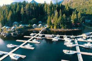 Aerial view of Nootka Marine Adventures.
