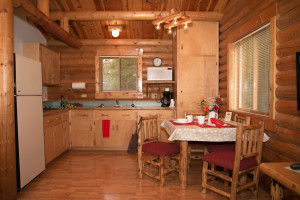 Cabin kitchen at North Forty Resort.