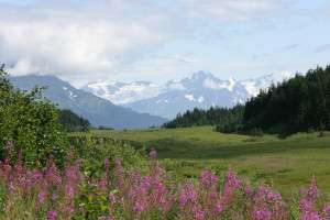 Scenic mountain view at Kenai Backcountry Lodge.
