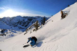 Wasatch Back Country at Snowpine Lodge.