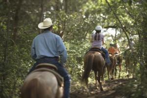 Horseback riding near Hyatt Regency Lost Pines Resort and Spa.