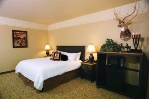 Bedroom of Gold Buckle Guest suite at The Inn at Circle T.