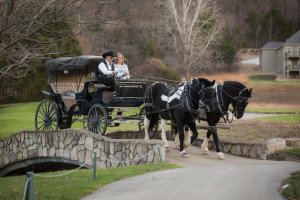 Horse carriage ride at Old Kinderhook Resort & Golf Club.
