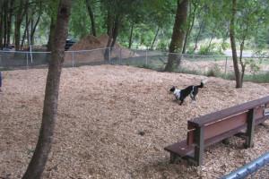Fenced dog park at Giant Redwoods RV Park & Camp.