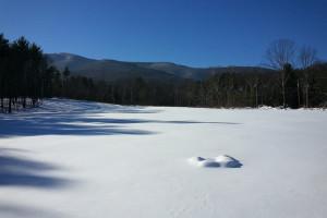 Skiing at Crystal Brook Resort.