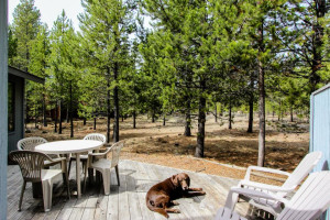 Pet friendly accommodations at Vacasa Rentals Sunriver.