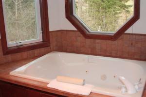 Guest hot tub at Carson Hot Springs Spa.