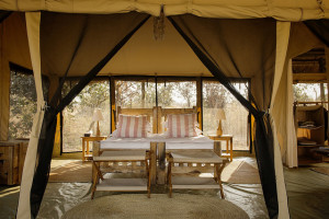 Guest room at Kigelia Lodge.