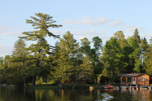 The Lake at Cedar Island Lodge