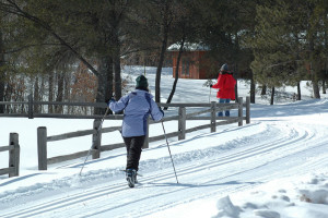 Ski trails at Heartwood Conference Center & Retreat.