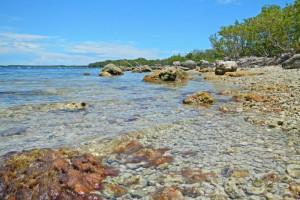 John Pennekamp Coral Reef State Park near Ed & Ellens Lodging.