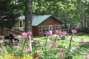 Cabin exterior at Mystic Moose.