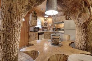 Cabin kitchen at Eagles Ridge Resort.