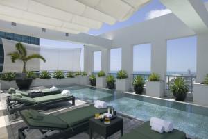 Penthouse pool at The Setai Miami.