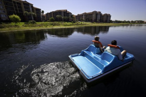 Couple on paddle boat at Westgate Lakes Resort.