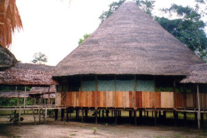 Exterior view of Loving Light Amazon Lodge.