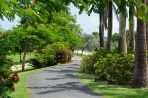 Walking path at Oceano Beach Resort.