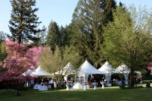 Wedding at The Wayfarer Resort.