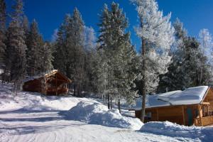 Cabins at Alexa Chalets -Timber Inn & Restaurant.