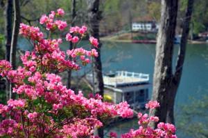 Lake View at Lodge On Lake Lure